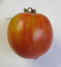 Tomato Darby Striped Red Yellow (single fruit)