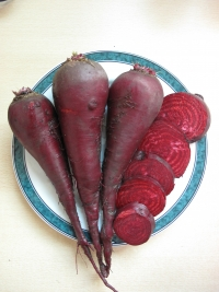 Beetroot Long Blood Red